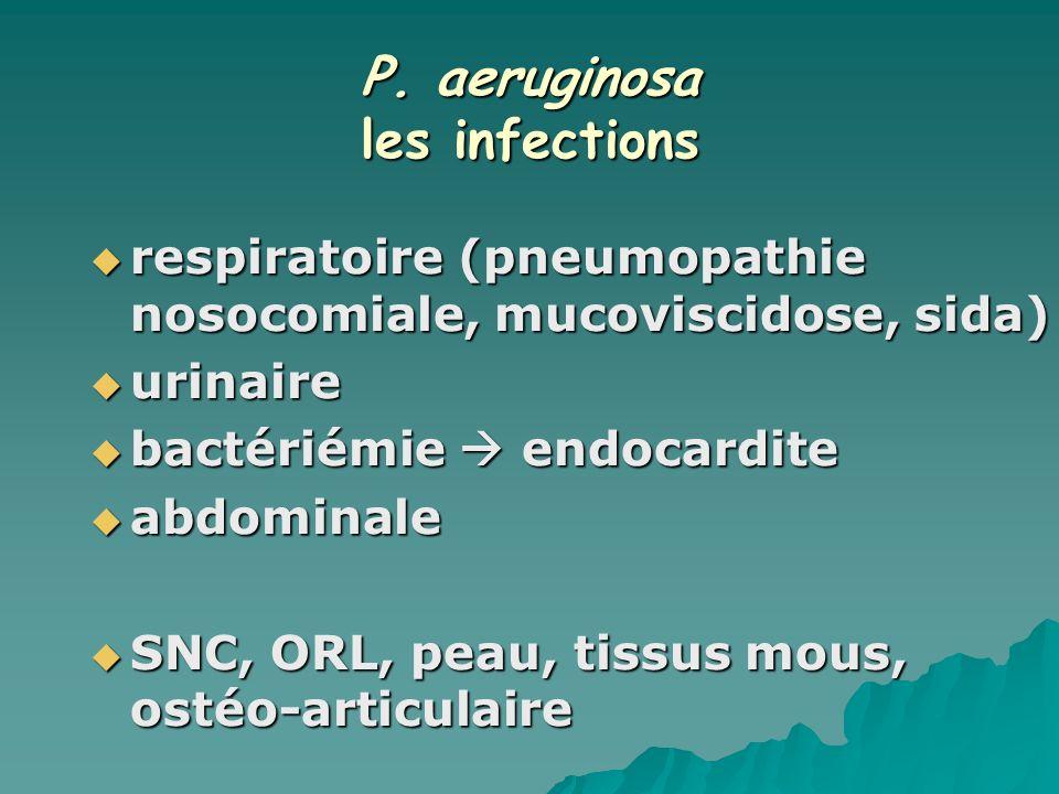 P. aeruginosa les infections respiratoire (pneumopathie nosocomiale, mucoviscidose, sida) respiratoire (pneumopathie nosocomiale, mucoviscidose, sida)