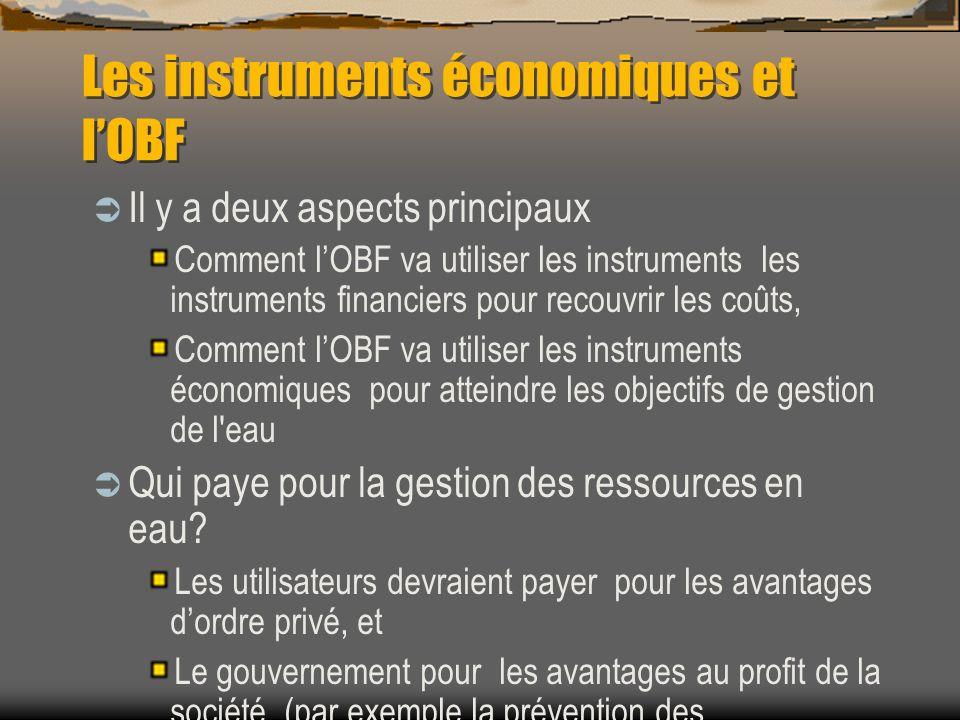 Les instruments économiques et lOBF Il y a deux aspects principaux Comment lOBF va utiliser les instruments les instruments financiers pour recouvrir