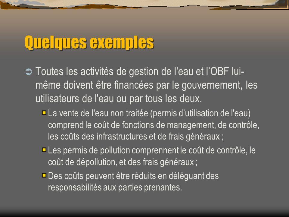 Quelques exemples Toutes les activités de gestion de l'eau et lOBF lui- même doivent être financées par le gouvernement, les utilisateurs de l'eau ou