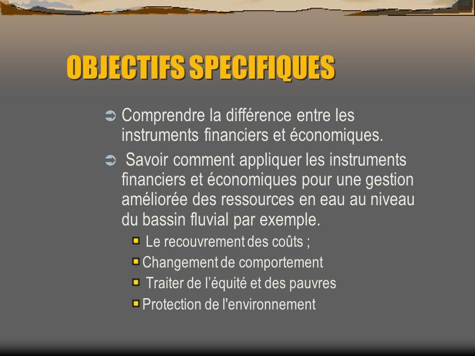 OBJECTIFS SPECIFIQUES Comprendre la différence entre les instruments financiers et économiques. Savoir comment appliquer les instruments financiers et