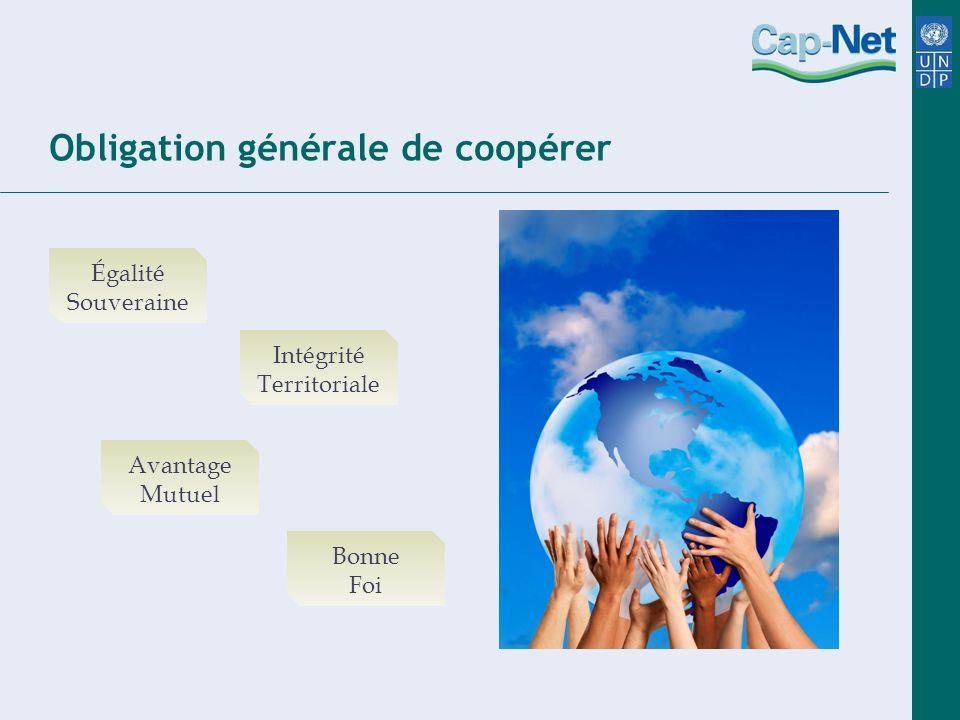 Obligation générale de coopérer Égalité Souveraine Avantage Mutuel Intégrité Territoriale Bonne Foi