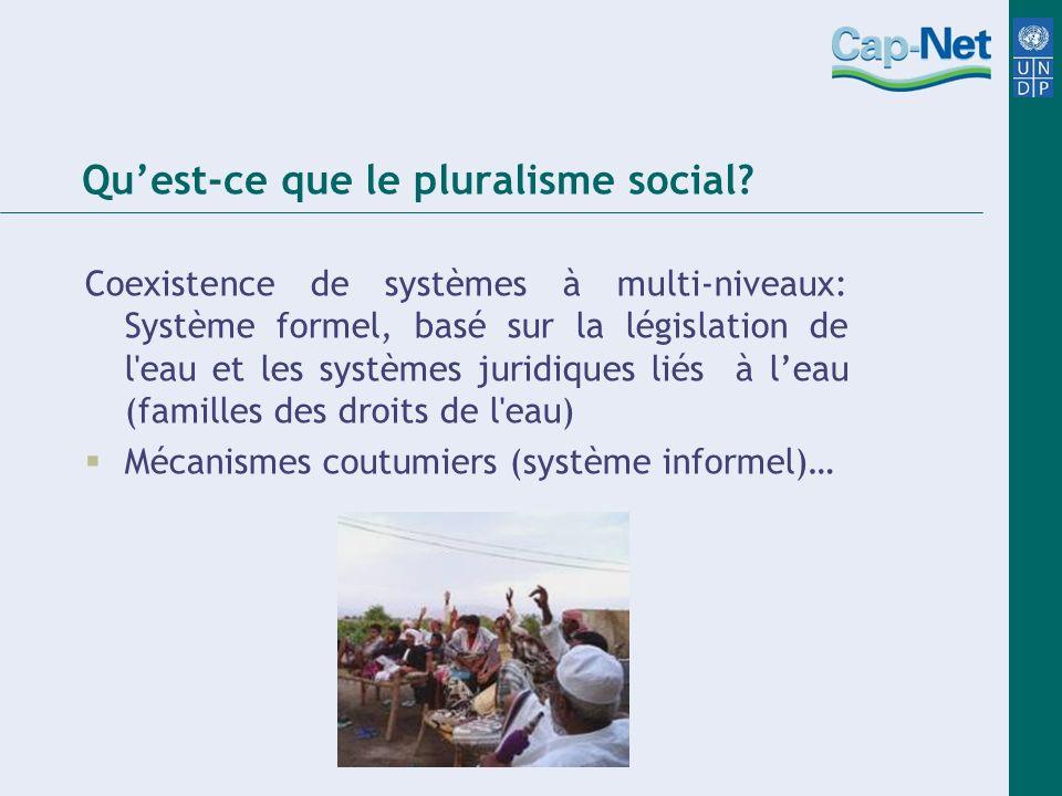 Quest-ce que le pluralisme social.