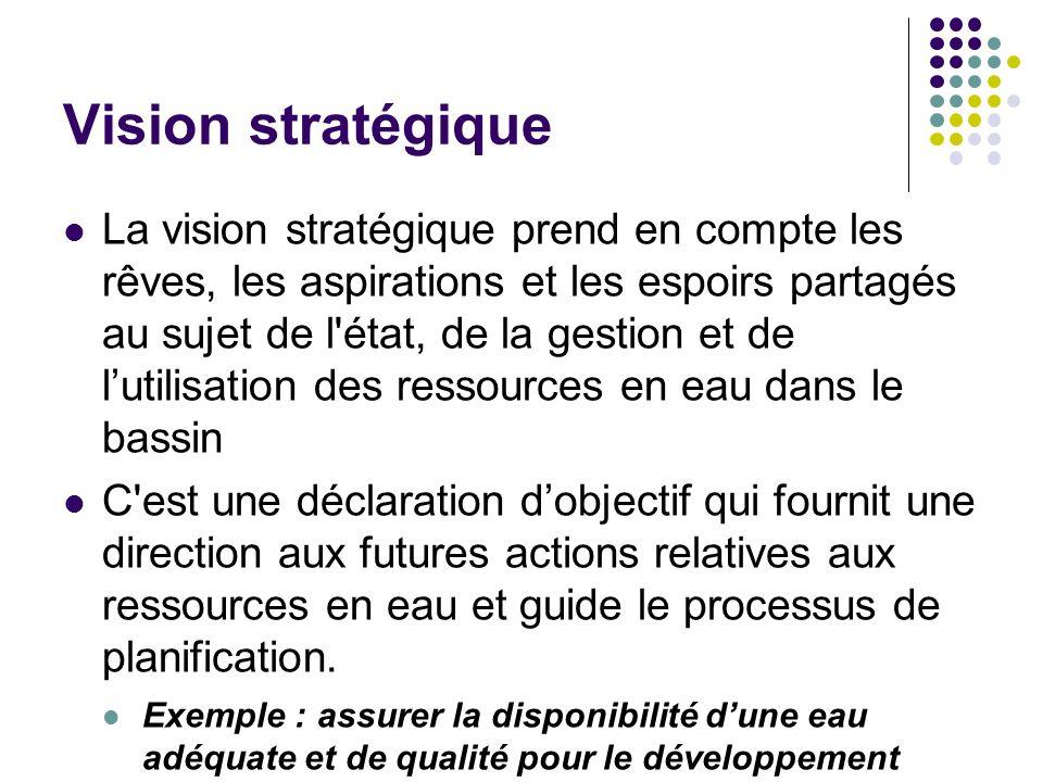 Vision stratégique La vision stratégique prend en compte les rêves, les aspirations et les espoirs partagés au sujet de l'état, de la gestion et de lu