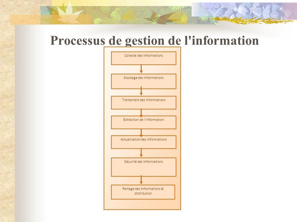 Processus de gestion de l'information Collecte des Informations Stockage des Informations Traitement des Informations Extraction de linformation Actua