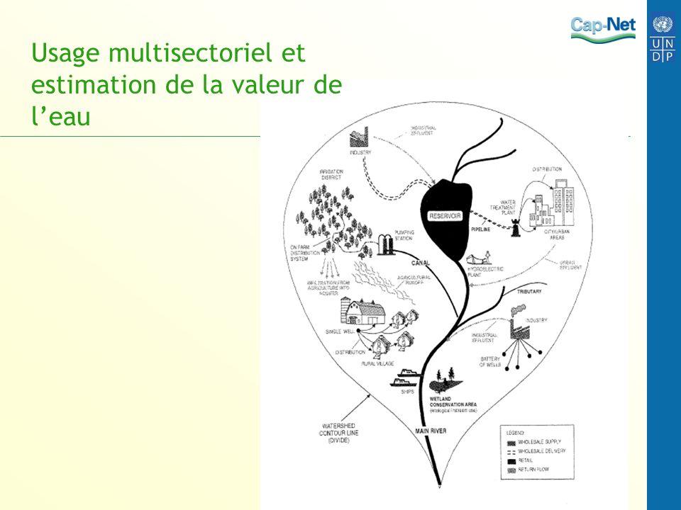 Usage multisectoriel et estimation de la valeur de leau