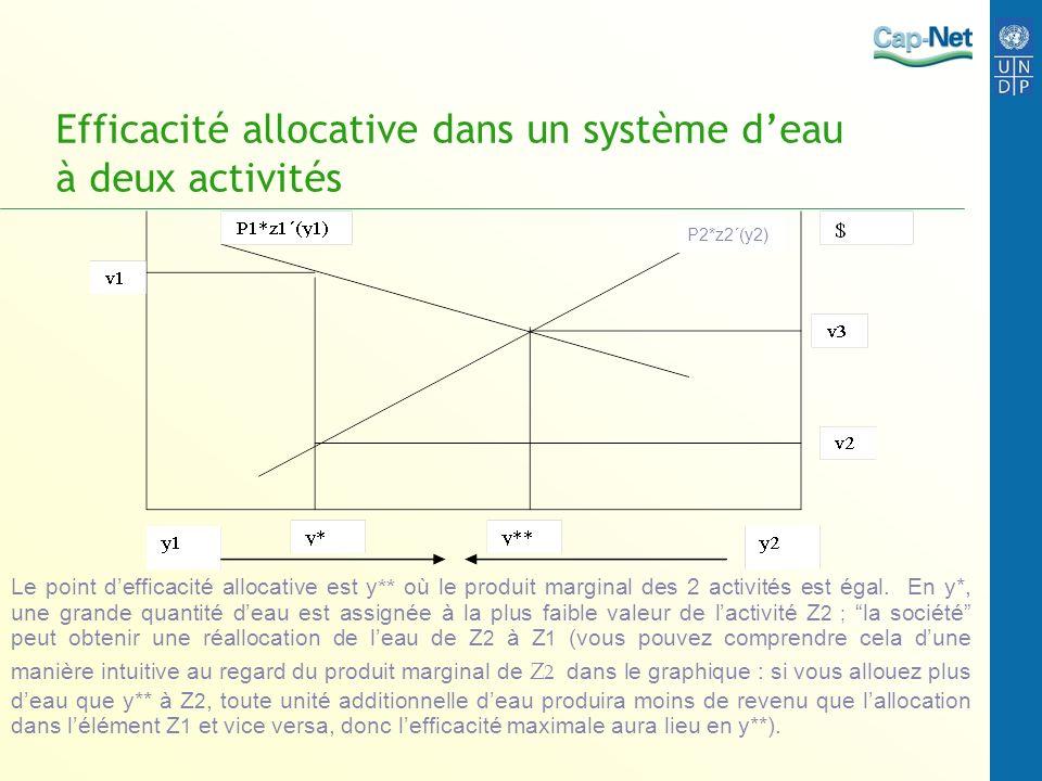 Efficacité allocative dans un système deau à deux activités P2*z2´(y2) Le point defficacité allocative est y ** où le produit marginal des 2 activités