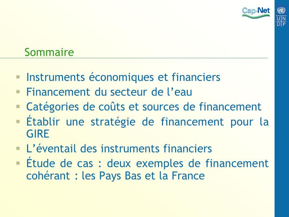 Sommaire Instruments économiques et financiers Financement du secteur de leau Catégories de coûts et sources de financement Établir une stratégie de f