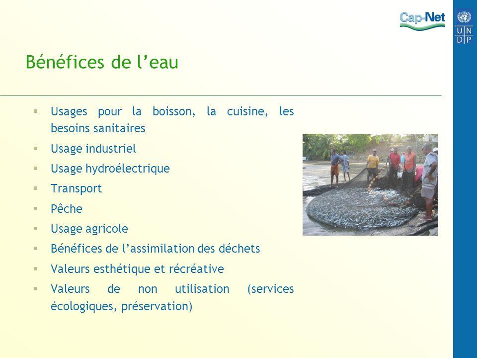Bénéfices de leau Usages pour la boisson, la cuisine, les besoins sanitaires Usage industriel Usage hydroélectrique Transport Pêche Usage agricole Bén