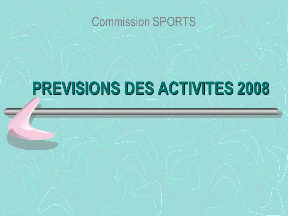 PREVISIONS DES ACTIVITES 2008 Commission SPORTS