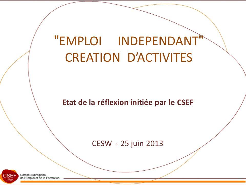 EMPLOI INDEPENDANT CREATION DACTIVITES Etat de la réflexion initiée par le CSEF CESW - 25 juin 2013