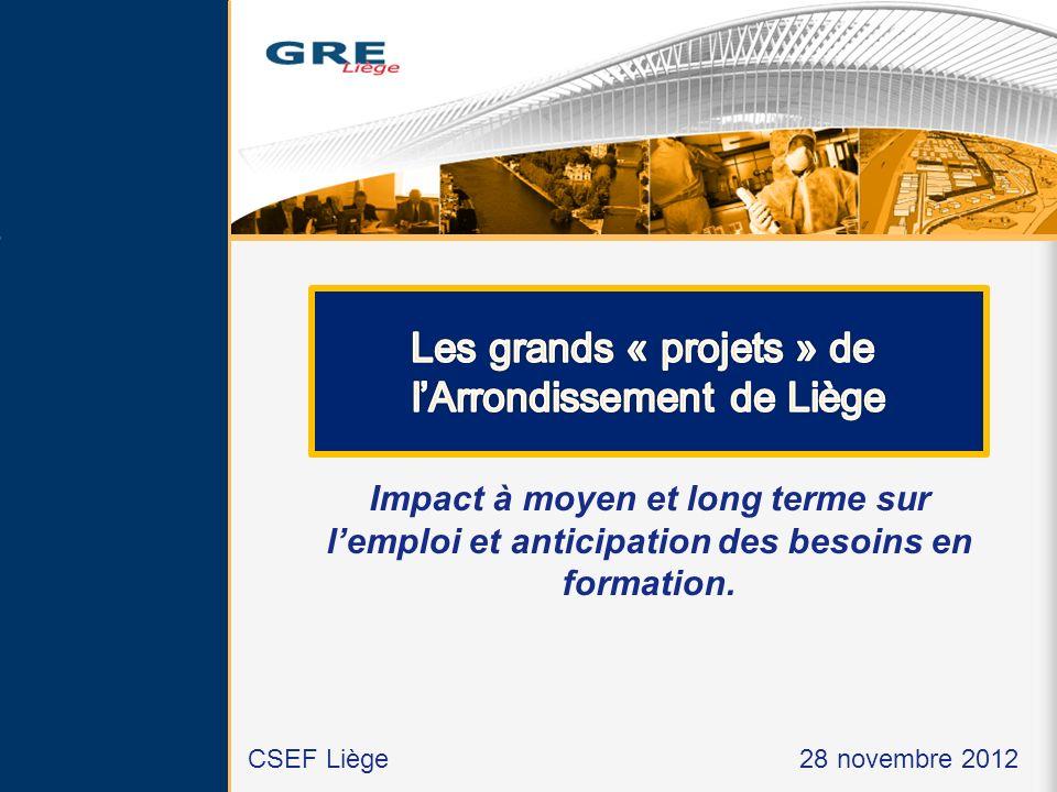 Impact à moyen et long terme sur lemploi et anticipation des besoins en formation. CSEF Liège 28 novembre 2012