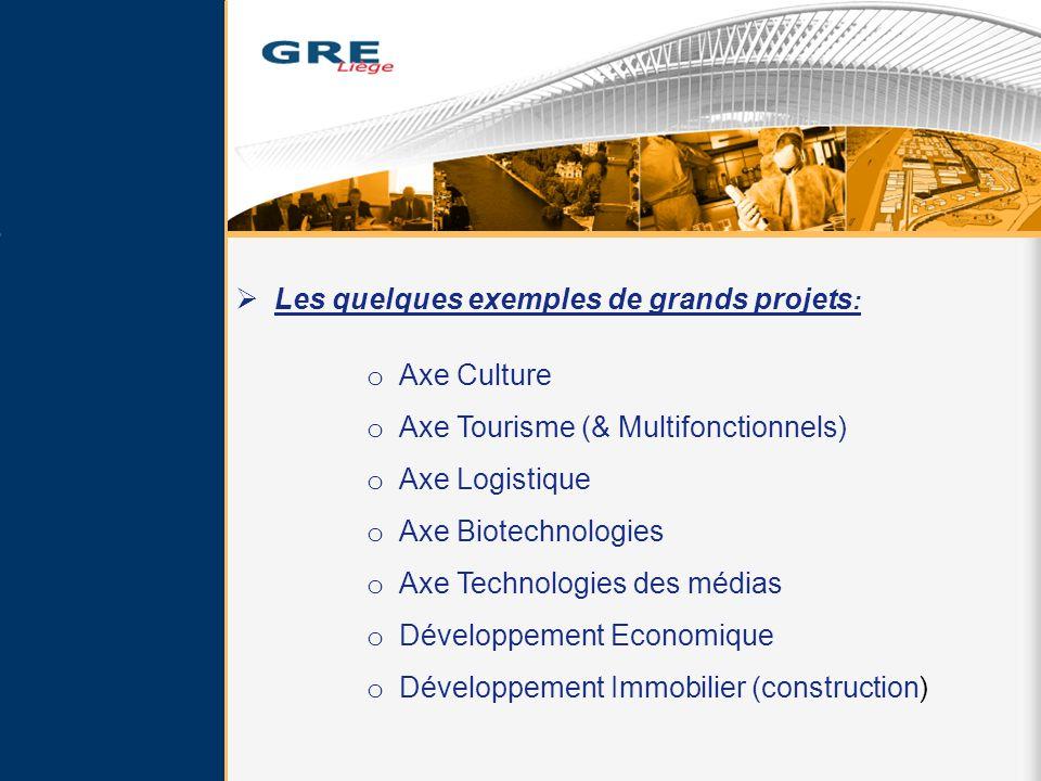 Les quelques exemples de grands projets : o Axe Culture o Axe Tourisme (& Multifonctionnels) o Axe Logistique o Axe Biotechnologies o Axe Technologies