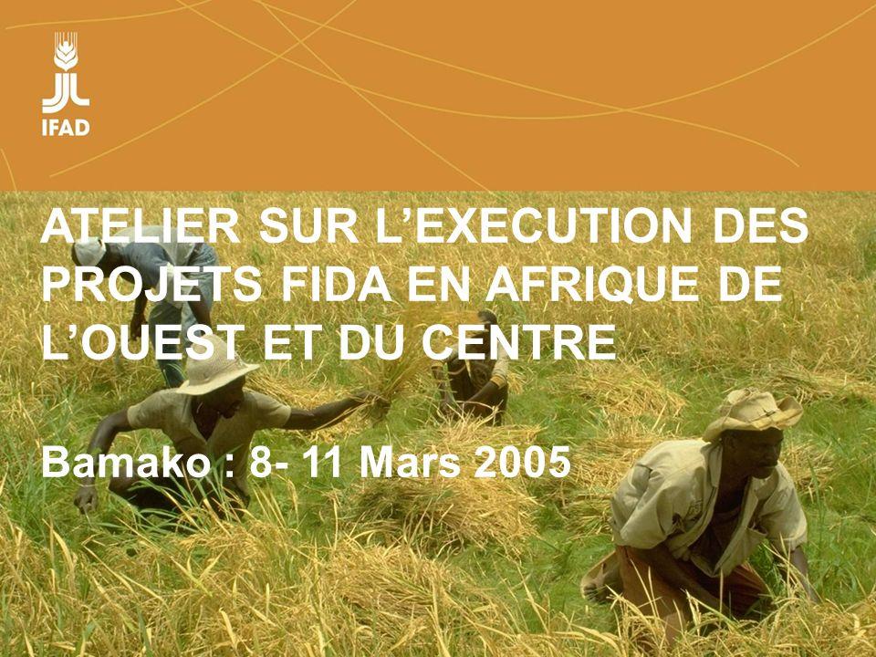 Farmers organizations, policies and markets ATELIER SUR LEXECUTION DES PROJETS FIDA EN AFRIQUE DE LOUEST ET DU CENTRE Bamako : 8- 11 Mars 2005