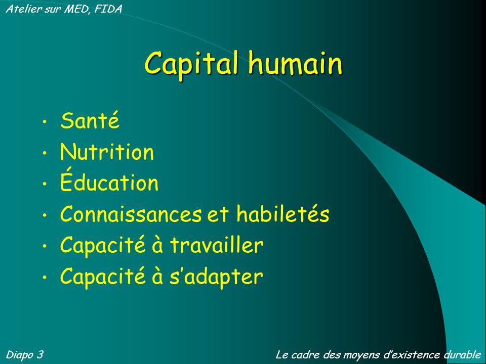 Capital humain Santé Nutrition Éducation Connaissances et habiletés Capacité à travailler Capacité à sadapter Diapo 3 Atelier sur MED, FIDA Le cadre des moyens dexistence durable