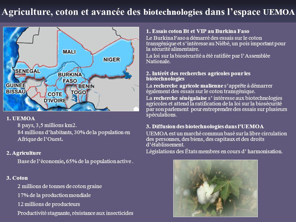 Agriculture, coton et avancée des biotechnologies dans lespace UEMOA 1. Essais coton Bt et VIP au Burkina Faso Le Burkina Faso a démarré des essais su