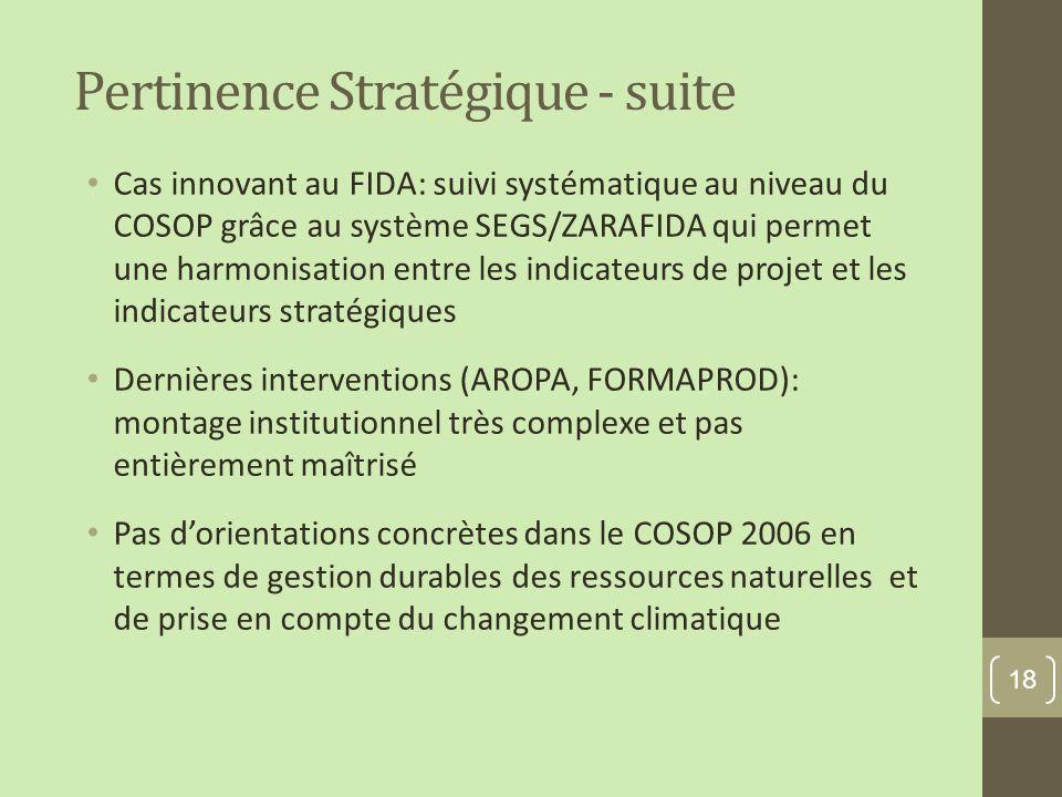 Pertinence Stratégique - suite Cas innovant au FIDA: suivi systématique au niveau du COSOP grâce au système SEGS/ZARAFIDA qui permet une harmonisation entre les indicateurs de projet et les indicateurs stratégiques Dernières interventions (AROPA, FORMAPROD): montage institutionnel très complexe et pas entièrement maîtrisé Pas dorientations concrètes dans le COSOP 2006 en termes de gestion durables des ressources naturelles et de prise en compte du changement climatique 18