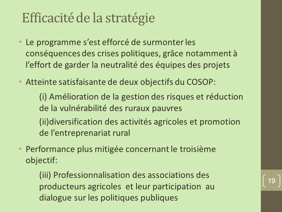 Efficacité de la stratégie Le programme sest efforcé de surmonter les conséquences des crises politiques, grâce notamment à leffort de garder la neutralité des équipes des projets Atteinte satisfaisante de deux objectifs du COSOP: (i) Amélioration de la gestion des risques et réduction de la vulnérabilité des ruraux pauvres (ii)diversification des activités agricoles et promotion de lentreprenariat rural Performance plus mitigée concernant le troisième objectif: (iii) Professionnalisation des associations des producteurs agricoles et leur participation au dialogue sur les politiques publiques 19