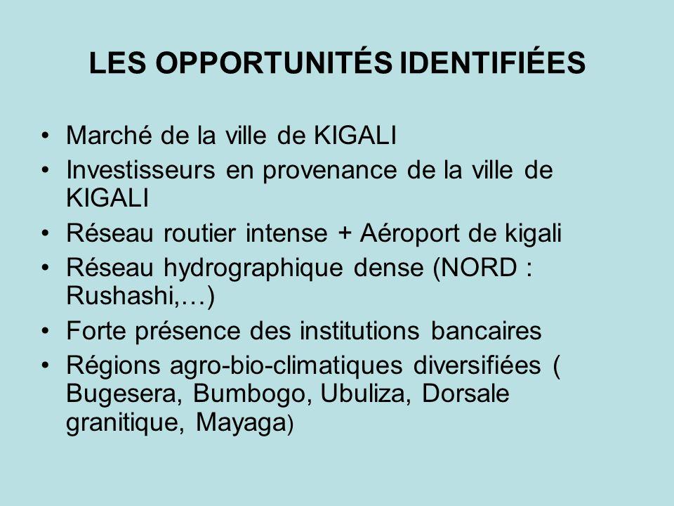 LES OPPORTUNITÉS IDENTIFIÉES Marché de la ville de KIGALI Investisseurs en provenance de la ville de KIGALI Réseau routier intense + Aéroport de kigali Réseau hydrographique dense (NORD : Rushashi,…) Forte présence des institutions bancaires Régions agro-bio-climatiques diversifiées ( Bugesera, Bumbogo, Ubuliza, Dorsale granitique, Mayaga )
