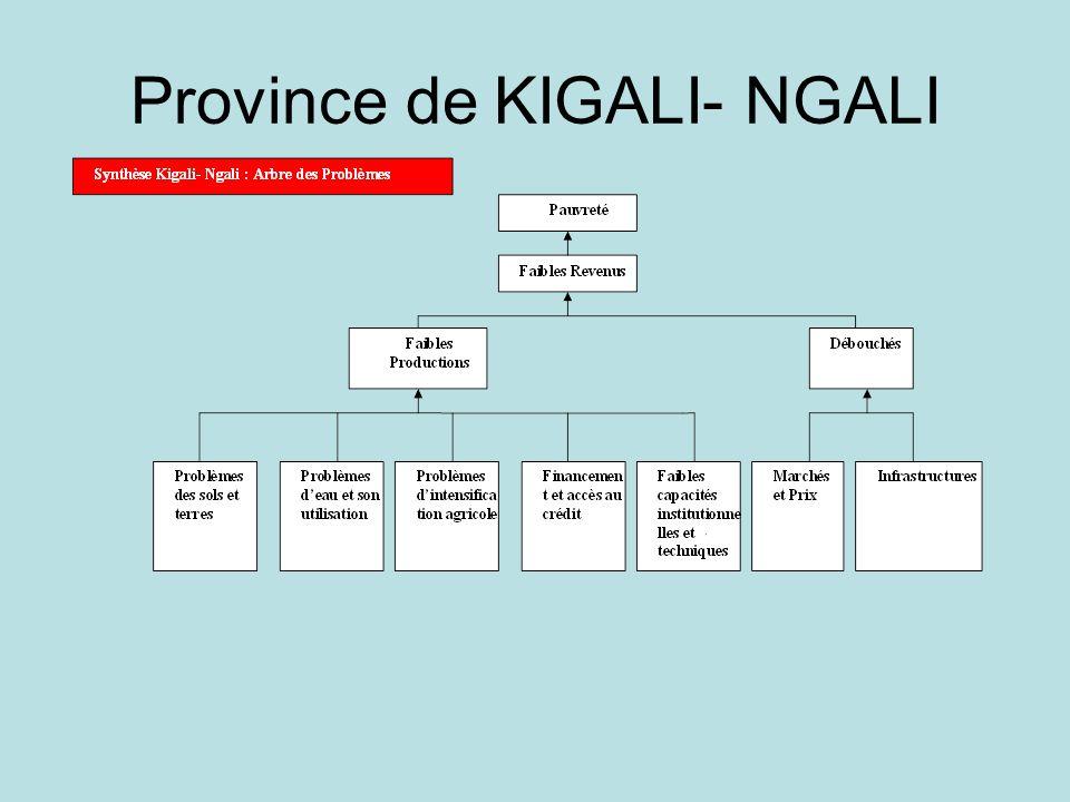 Province de KIGALI- NGALI