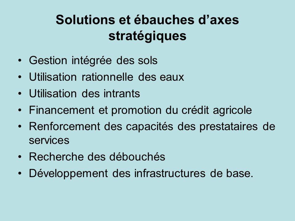 Solutions et ébauches daxes stratégiques Gestion intégrée des sols Utilisation rationnelle des eaux Utilisation des intrants Financement et promotion