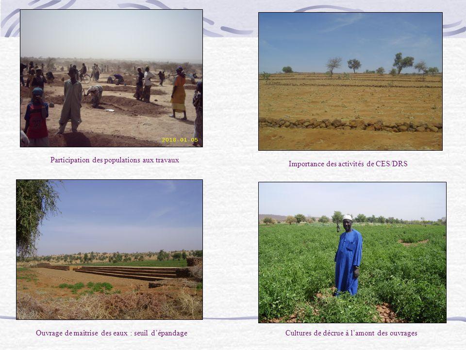 Participation des populations aux travaux Importance des activités de CES/DRS Ouvrage de maîtrise des eaux : seuil dépandageCultures de décrue à lamon