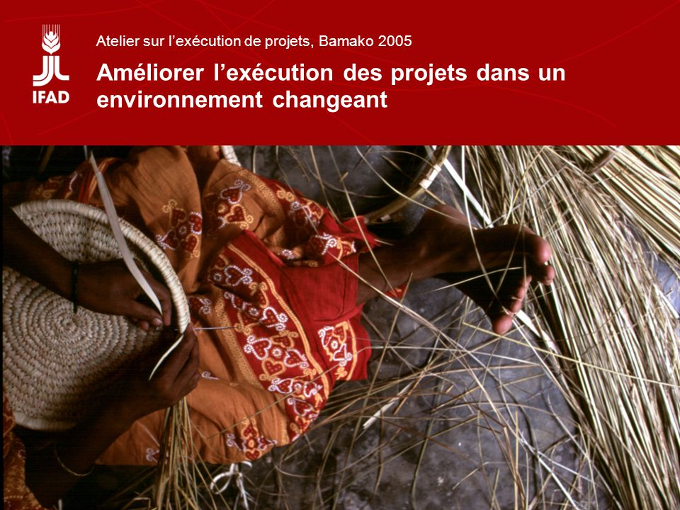 Atelier sur lexécution de projets, Bamako 2005 Améliorer lexécution des projets dans un environnement changeant