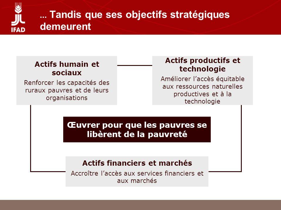 Traduire les objectifs en action Les COSOP sont en cours de révision et de reformulation afin de fournir une réponse programmatique aux opportunités stratégiques, cohérente avec les stratégies de développement national (notamment les DRSP) Les plans daction de Cotonou et de Bamako constituent des opportunités clefs pour lexécution de la nouvelle approche stratégique Les nouveaux outils et structures: SAFD, SYGRI, communication, présence sur le terrain, politique des DAT etc.