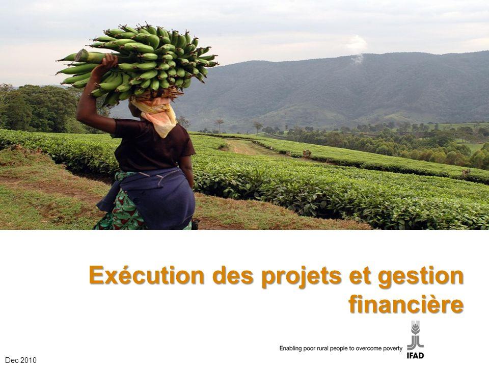 Title of presentation/theme Exécution des projets et gestion financière Dec 2010