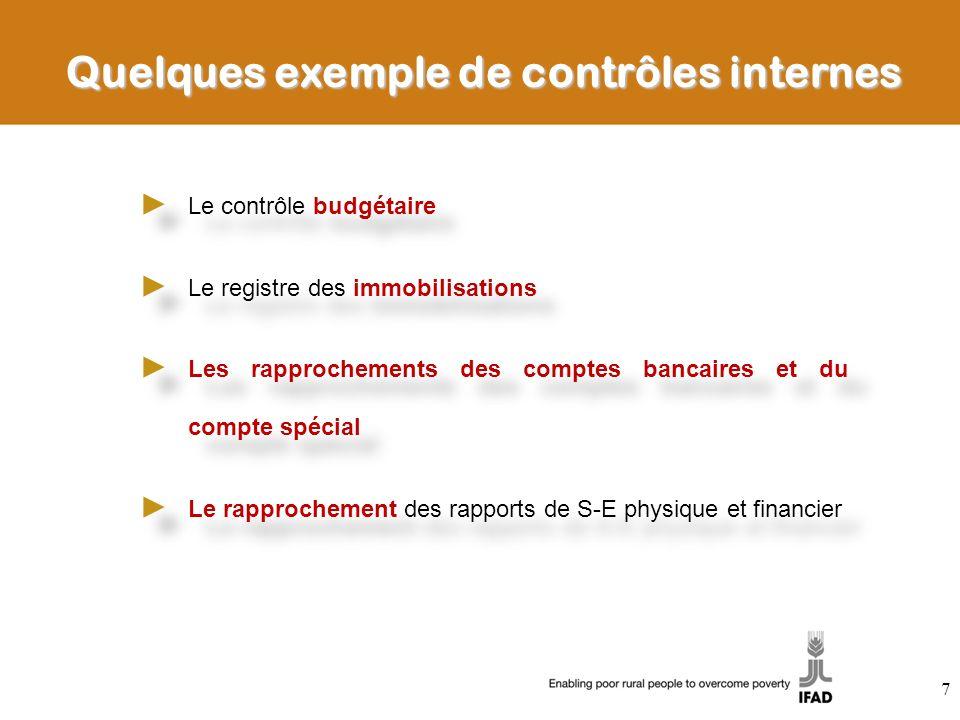 Quelques exemple de contrôles internes Le contrôle budgétaire Le registre des immobilisations Les rapprochements des comptes bancaires et du compte sp