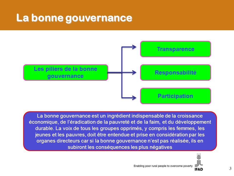 Gestion financière et bonne gouvernance La GF fait partie intégrante du processus de développement mis en oeuvre pour atteindre les objectifs de développement pour le millénaire Lun des objectifs de la Déclaration de Paris est de recourir davantage aux systèmes publics de gestion financière ESA travaille avec les emprunteurs afin dutiliser dans la mesure du possible les systèmes nationaux (par exemple, rapports/ passation des marchés/ budget/ comptabilité/ audit) La GF met en oeuvre 2 approches a)Lassurance que les fonds du FIDA sont utilisés pour les fins auxquelles ils sont destinés (grâce à la supervision directe et à des systèmes fiables de contrôle interne) b)Lassistance aux gouvernements/ projets afin daméliorer les capacités de GF 14