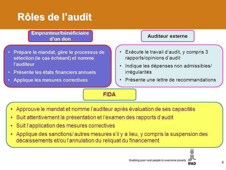 4 Rôles de laudit Emprunteur/bénéficiaire dun don Prépare le mandat, gère le processus de sélection (le cas échéant) et nomme lauditeur Présente les é