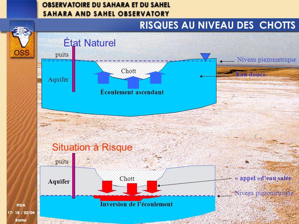 FIDA 17- 18 / 02/04 Rome Chott Aquifer Chott Inversion de lécoulement Écoulement ascendant Eau douce « appel »deau salée puits Niveau piezométrique Ni