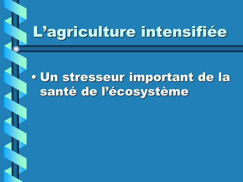 Lagriculture intensifiée Un stresseur important de la santé de lécosystèmeUn stresseur important de la santé de lécosystème