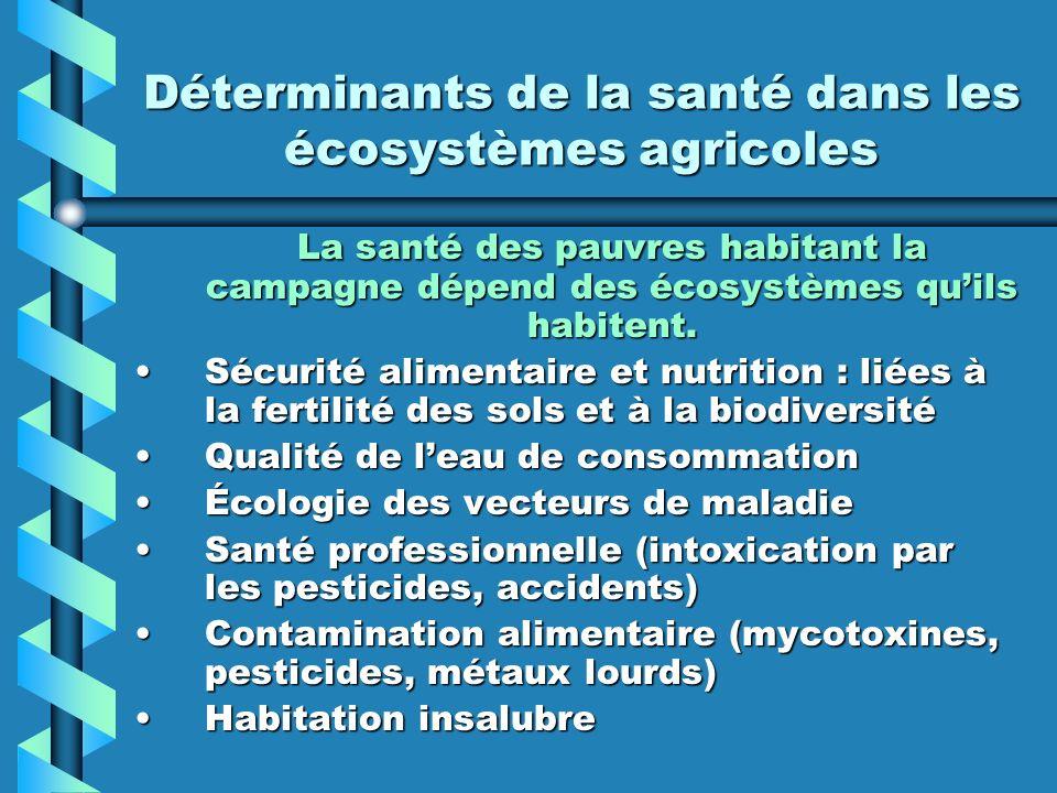 Déterminants de la santé dans les écosystèmes agricoles La santé des pauvres habitant la campagne dépend des écosystèmes quils habitent. Sécurité alim