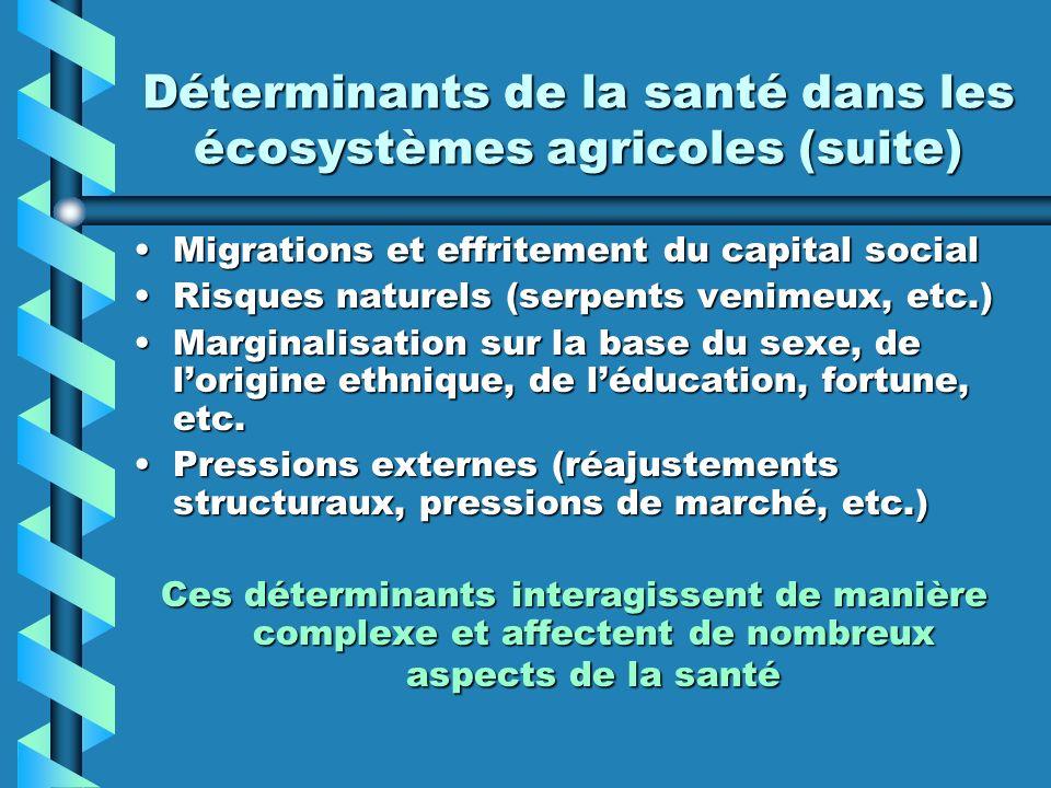 Déterminants de la santé dans les écosystèmes agricoles (suite) Migrations et effritement du capital socialMigrations et effritement du capital social
