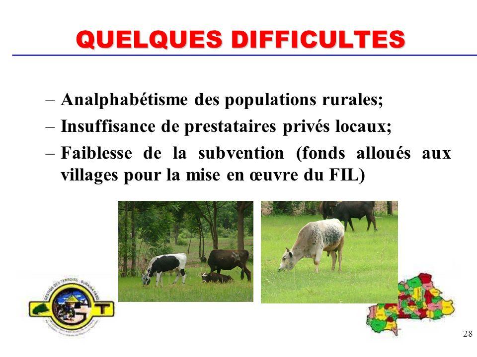 28 QUELQUES DIFFICULTES –Analphabétisme des populations rurales; –Insuffisance de prestataires privés locaux; –Faiblesse de la subvention (fonds allou