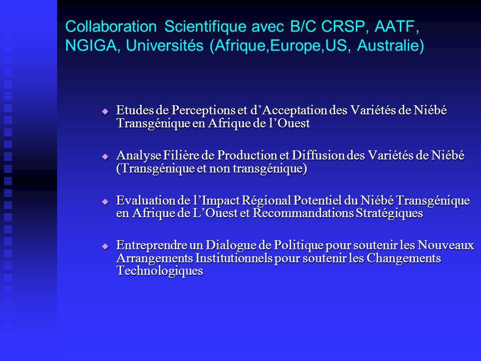 Collaboration Scientifique avec B/C CRSP, AATF, NGIGA, Universités (Afrique,Europe,US, Australie) Etudes de Perceptions et dAcceptation des Variétés d