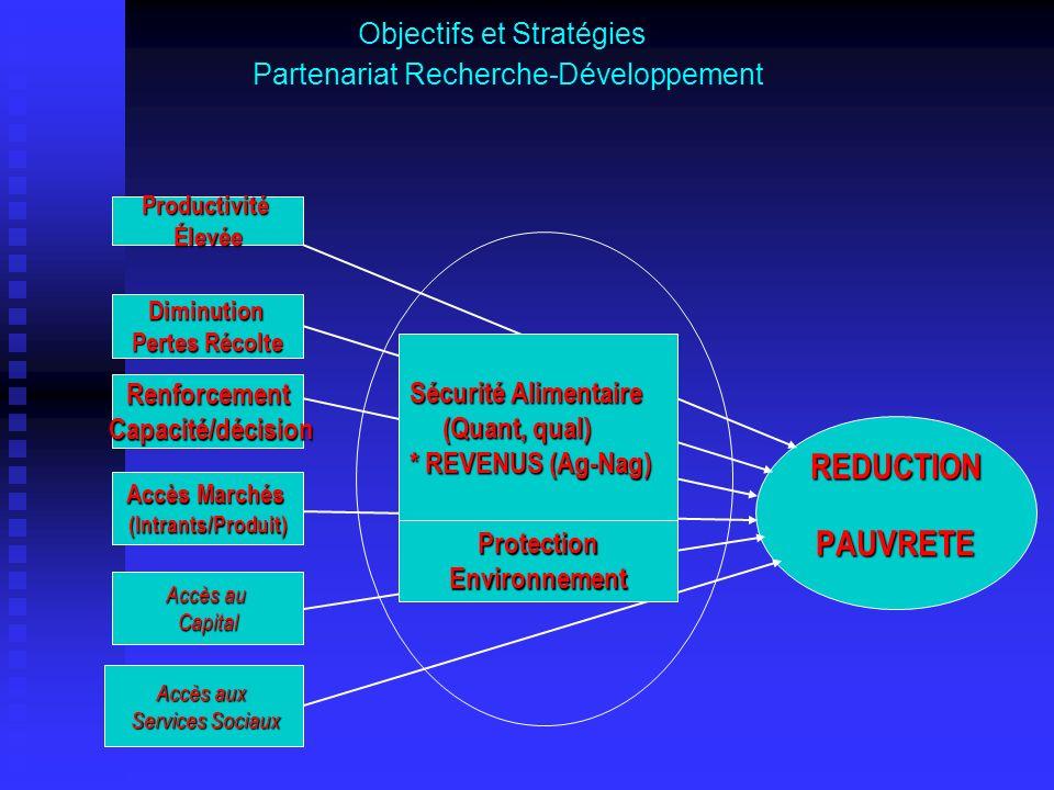 Objectifs et Stratégies Partenariat Recherche-Développement REDUCTIONPAUVRETE Accès aux Services Sociaux Services Sociaux ProductivitéÉlevée Diminutio