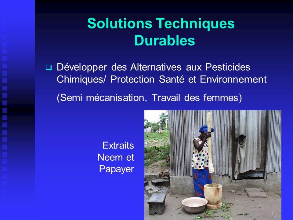 Développer des Alternatives aux Pesticides Chimiques/ Protection Santé et Environnement (Semi mécanisation, Travail des femmes) Solutions Techniques Durables Extraits Neem et Papayer