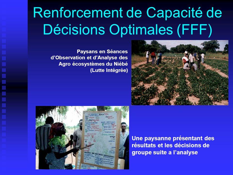 Renforcement de Capacité de Décisions Optimales (FFF) Paysans en Séances dObservation et dAnalyse des Agro écosystèmes du Niébé (Lutte Intégrée) Une paysanne présentant des résultats et les décisions de groupe suite a lanalyse