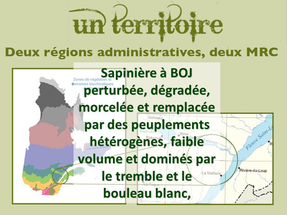 Source: http://www.mtq.gouv.qc.ca Sapinière à BOJ perturbée, dégradée, morcelée et remplacée par des peuplements hétérogènes, faible volume et dominés