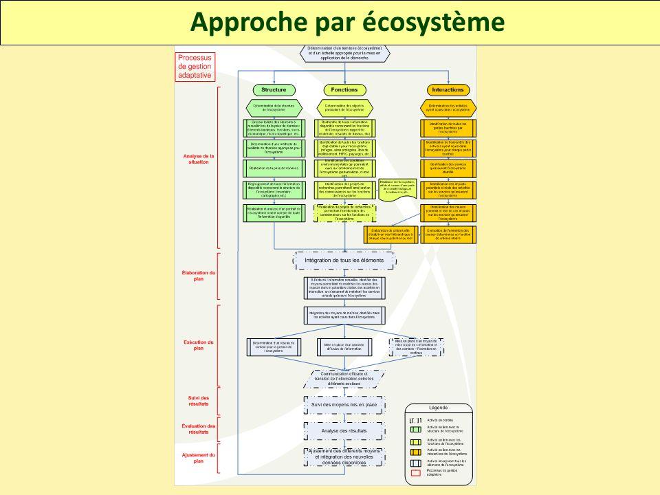 Approche par écosystème