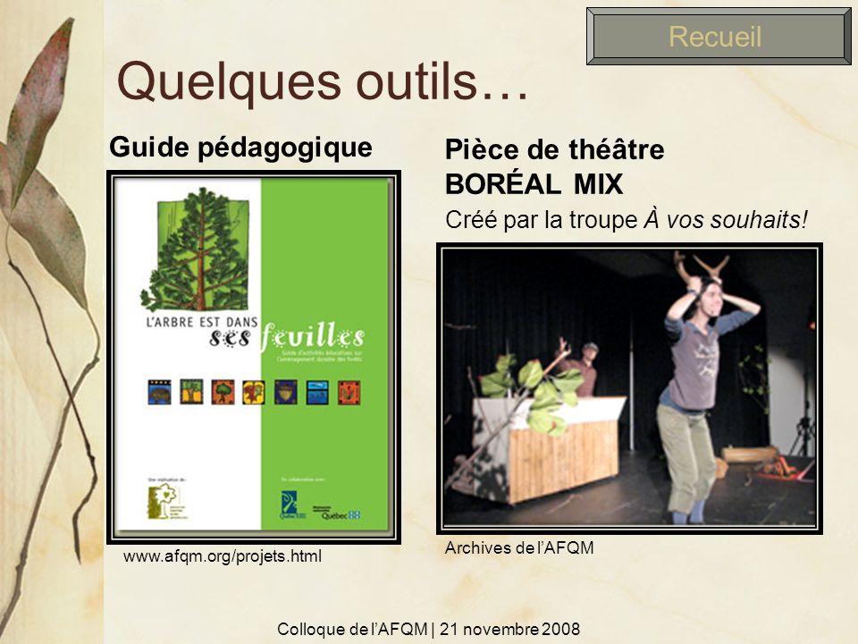 Quelques outils… Guide pédagogique Pièce de théâtre BORÉAL MIX Colloque de lAFQM | 21 novembre 2008 Recueil Créé par la troupe À vos souhaits! www.afq
