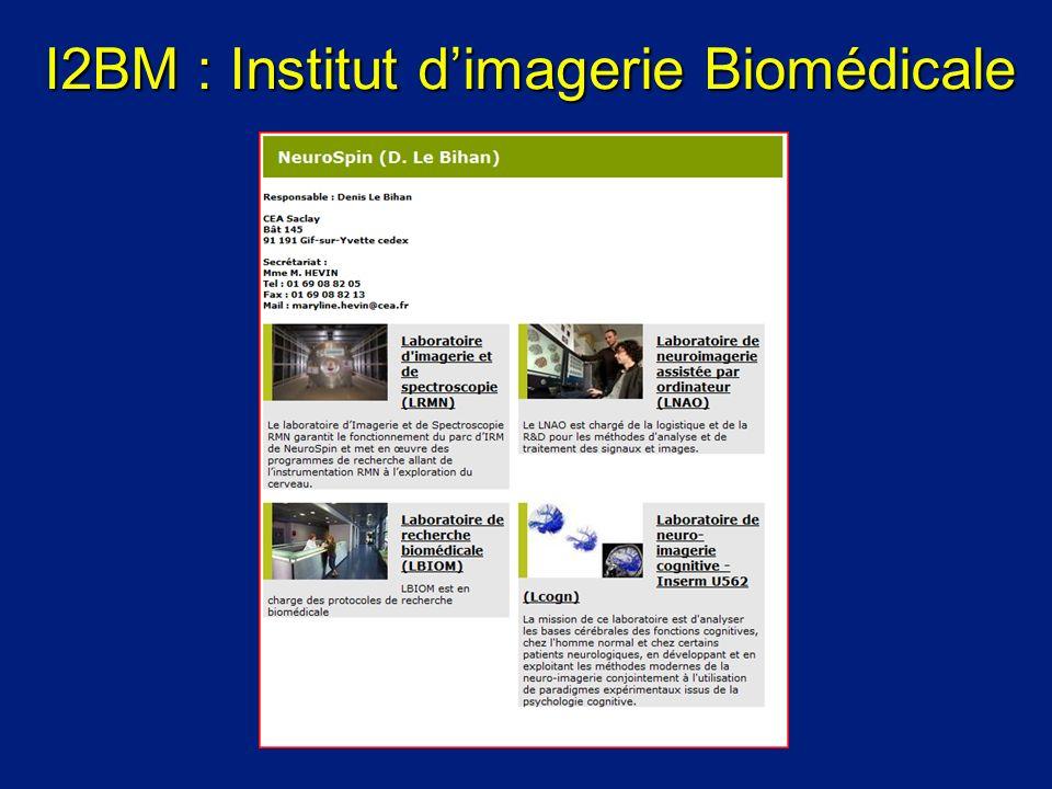 I2BM : Institut dimagerie Biomédicale