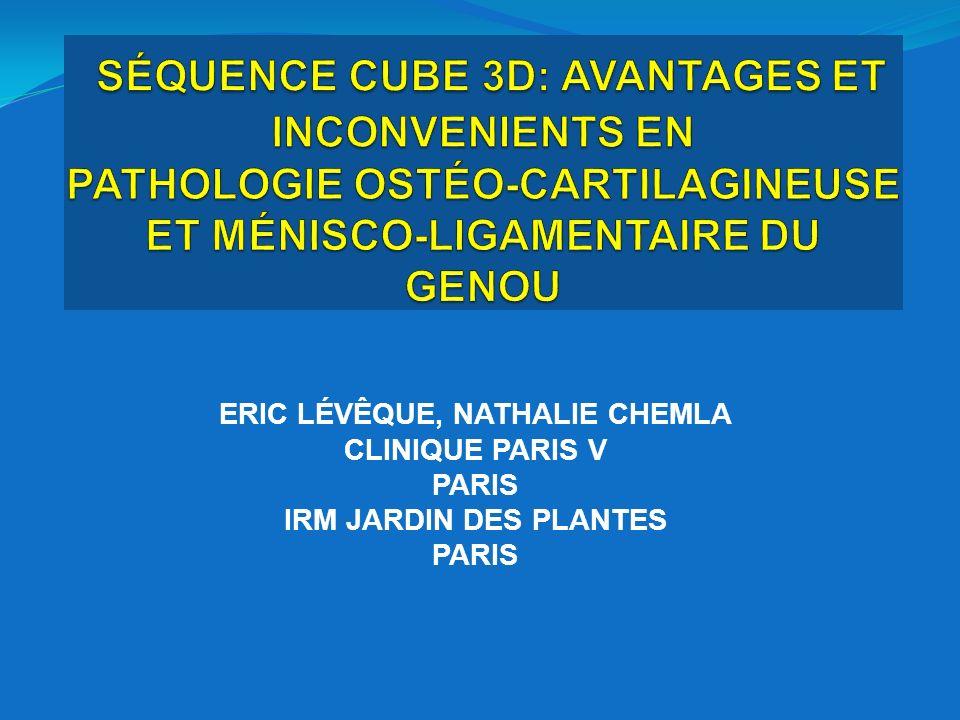 3DCUBE3DCUBE Reconstruction 2,5 mm Reconstruction 0,4 mm Même patient IRM