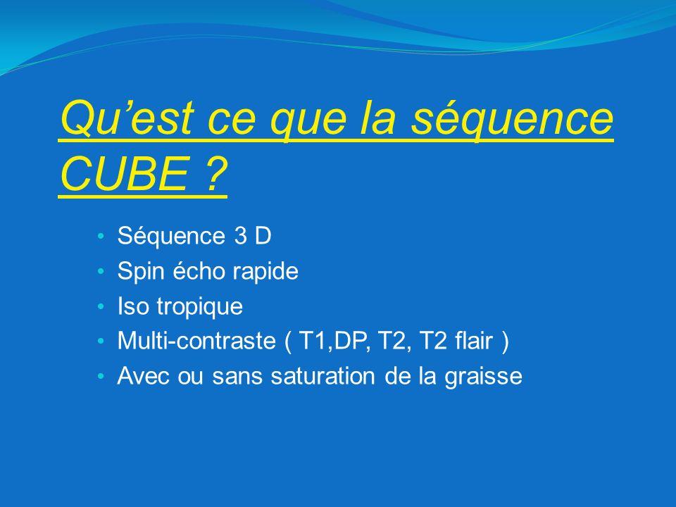 RF Pulse 020406080 0 30 60 90 120 150 180 FSE CUBE Echo Signal 020406080 0 0.2 0.4 0.6 0.8 1 FSE CUBE 3D CUBE: Basée sur la modulation du pulse des différents angles de refocalisation lors du train décho Permet un meilleur signal dun écho à lautre et réduit le blurring malgré des trains décho élevé Laugmentation de langle de refocalisation permet un meilleur rapport signal/bruit 010203040506070 0 20 40 60 80 100 120 140 160 180 RF pulse flip 120 – 50 – 120 vs 120 – 25 - 120 Remerciement à Aurélie Ribet et Grégory Trausch GE