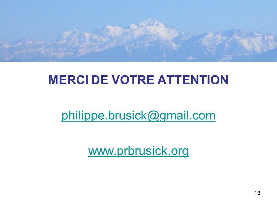 18 MERCI DE VOTRE ATTENTION philippe.brusick@gmail.com www.prbrusick.org