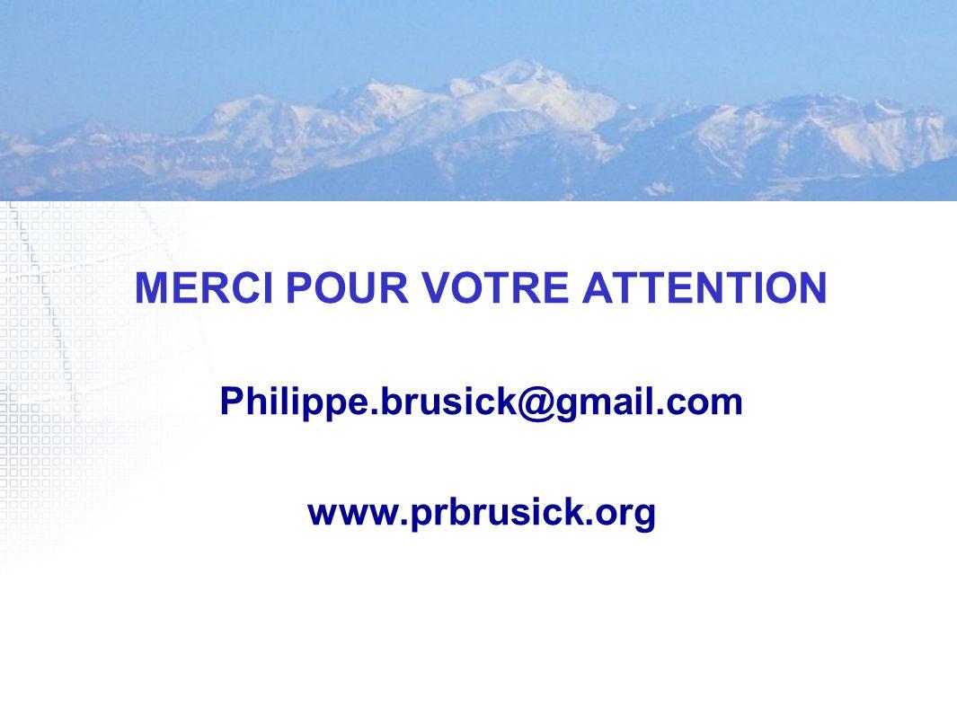 MERCI POUR VOTRE ATTENTION Philippe.brusick@gmail.com www.prbrusick.org