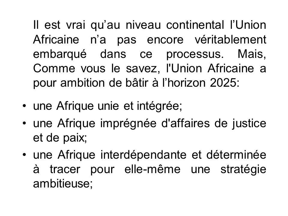 Il est vrai quau niveau continental lUnion Africaine na pas encore véritablement embarqué dans ce processus.
