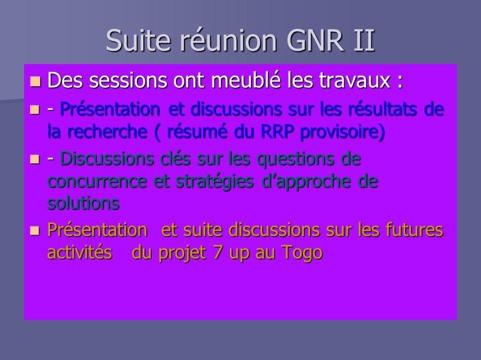 Réunion du GNR II, Lomé, Togo